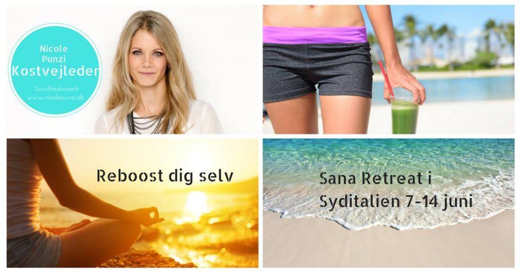 Sund med lækkerhed - Sana retreat med Detox Nicole
