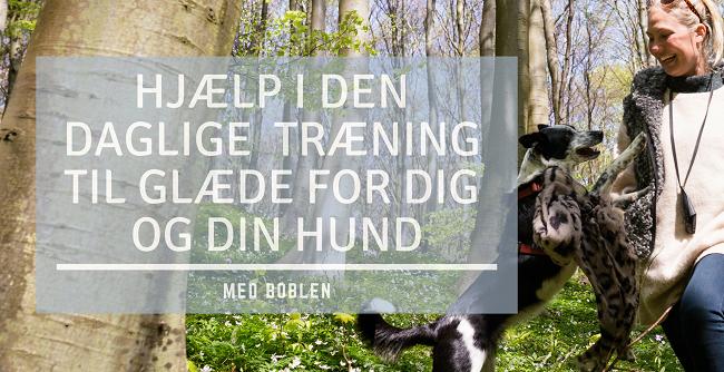 Lea Nor online medlemsklub Boblen fyldt med online hundetræning