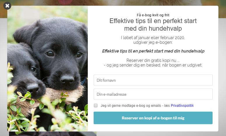 Dinhundehvalp.dk